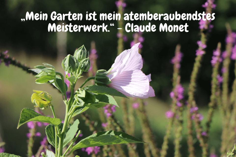 """""""Mein Garten ist mein atemberaubendstes Meisterwerk."""" - Claude Monet"""