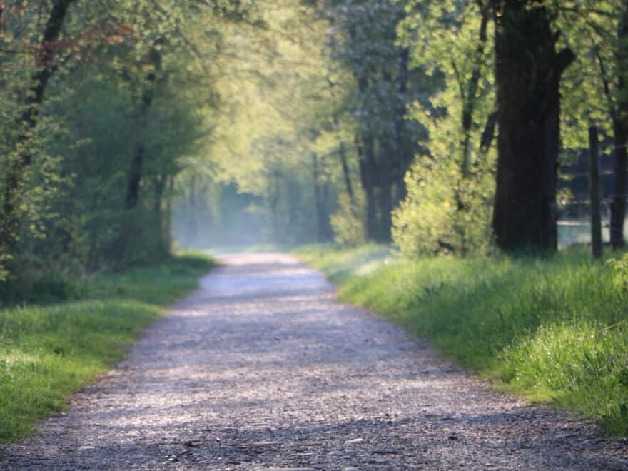 Zitate Mut- Wanderweg