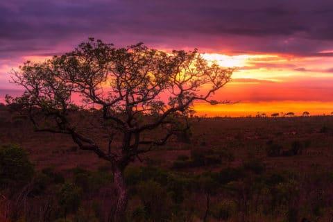 Afrikanischer Himmel