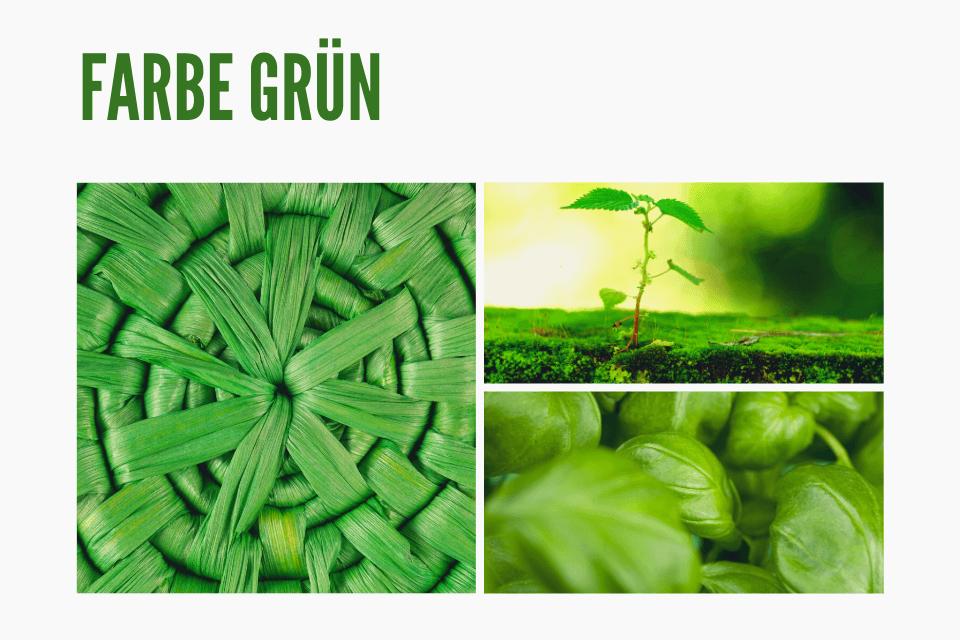 Das Geheimnis der Farbe Grün