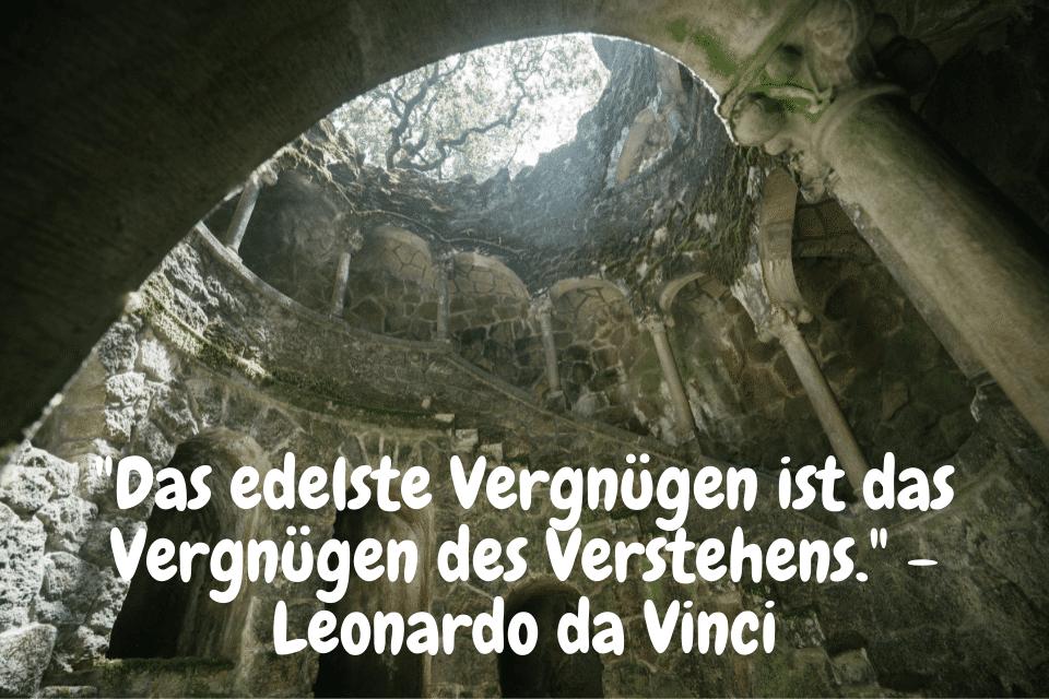 Das edelste Vergnügen ist das Vergnügen des Verstehens. - Leonardo da Vinci