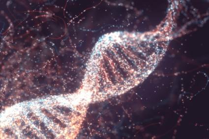 Desoxyribonukleinsäure DNA