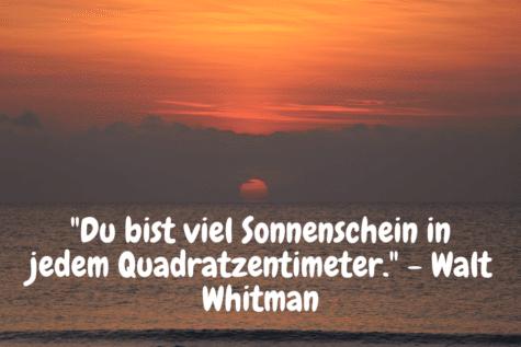 Sonnenaufgang am Meer - Du bist viel Sonnenschein in jedem Quadratzentimeter. - Walt Whitman