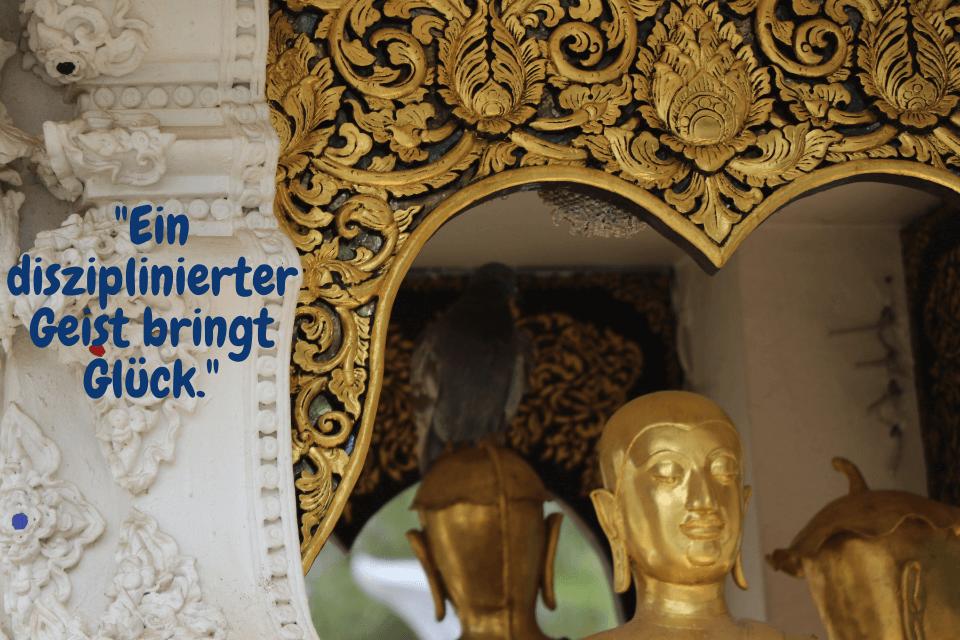 """Buddhas Weisheiten -""""Ein disziplinierter Geist bringt Glück."""""""