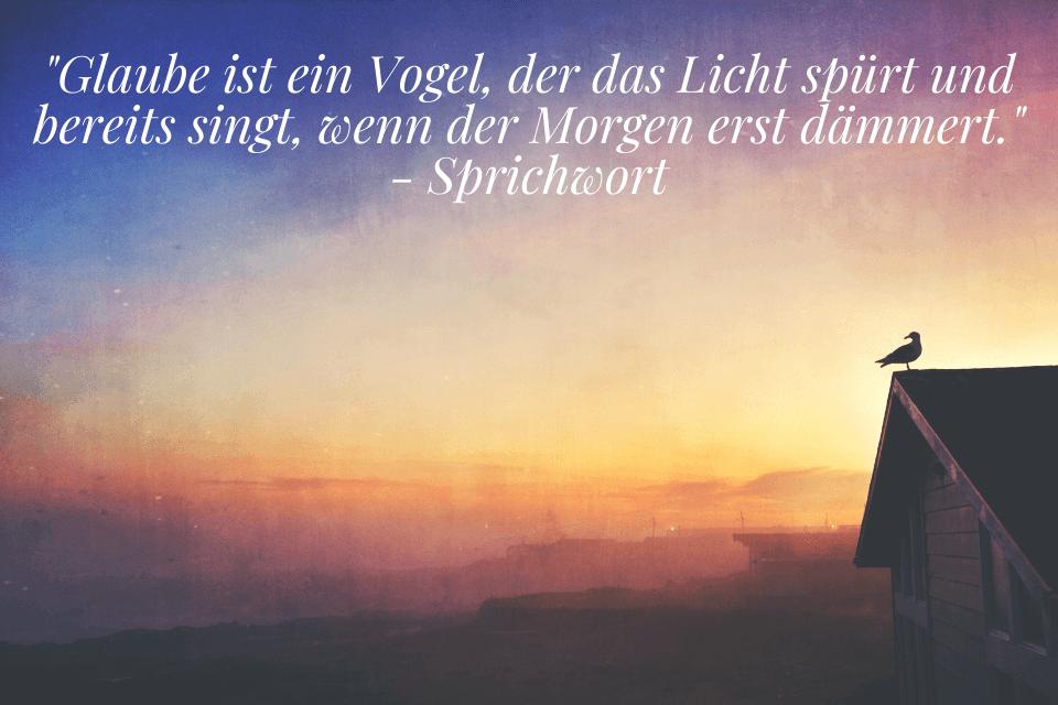 Vogel sing bei Morgendämmerung - Glaube ist ein Vogel, der das Licht spürt und bereits singt, wenn der Morgen erst dämmert. - Sprichwort
