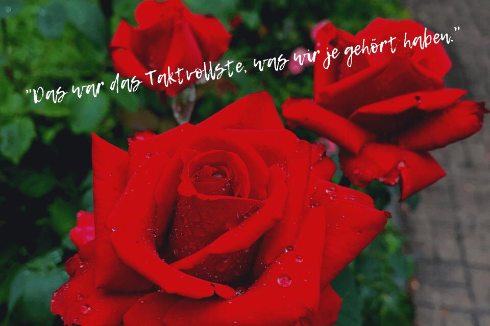 Rote rosen mit Wasserperlen - Glücklich in der Ehe Story of my life