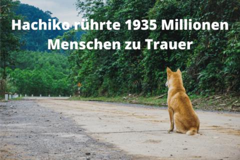 Hachiko rührte 1935 Millionen Menschen zu Trauer