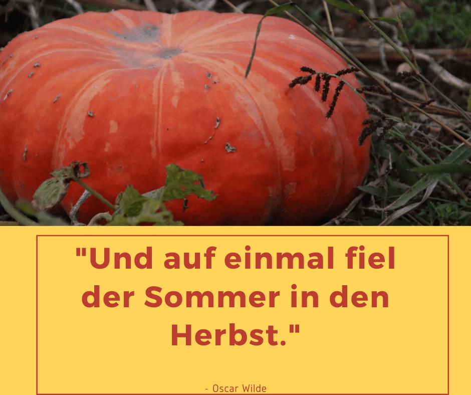 grosse orange feldkürbis - Herbst Zitat - Oscar Wilde