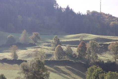 Herbstlandschaft im Dunst des Morgens