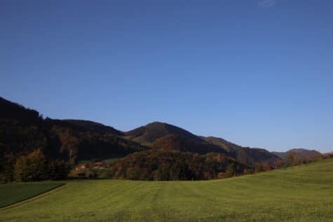 Weisheiten Herbst Sprüche