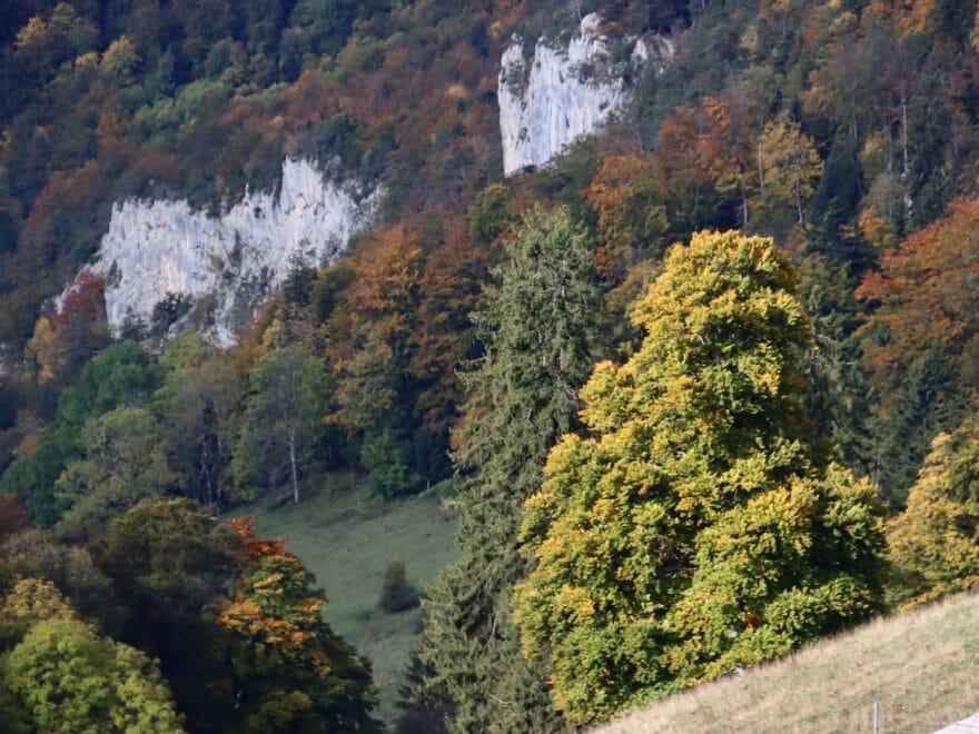 Wilde Herbstlandschaft Naturpark Thal in Mümliswil