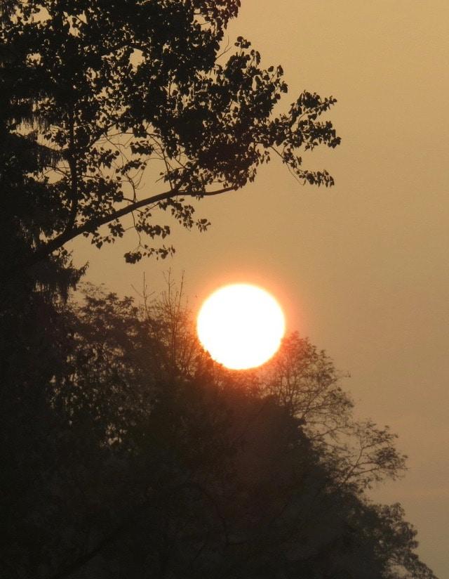 Leben und Sonne