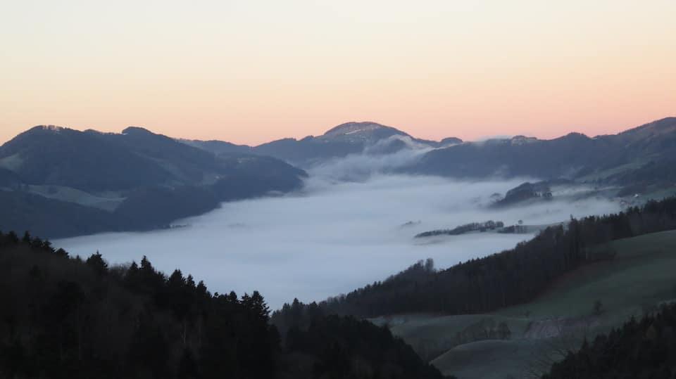 Das Wasser des Lebens - Nebel