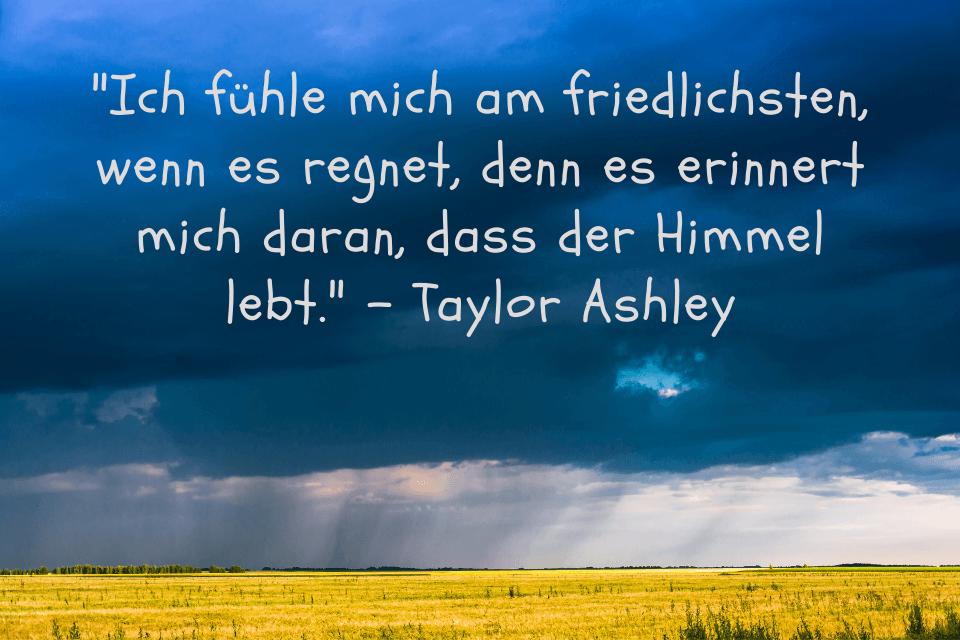 Gelbes Rapsfeld mit dunkeln Regenwolken mit der Aufschrift: Ich fühle mich am friedlichsten, wenn es regnet, denn es erinnert mich daran, dass der Himmel lebt. - Taylor Ashley