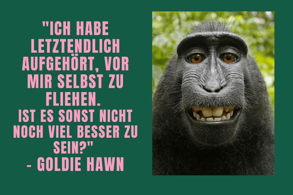 """Ein Grinsender Affe """"Ich habe letztendlich aufgehört, vor mir selbst zu fliehen.  Ist es sonst nicht noch viel besser zu sein?""""  - Goldie Hawn"""