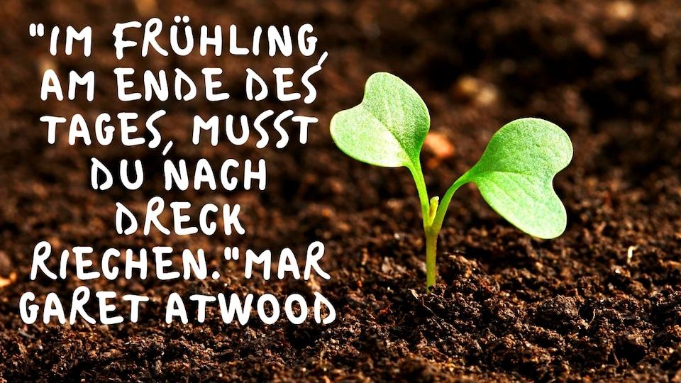 """Frühling Sprüche - Legendärer Frühling! - """"Im Frühling, am Ende des Tages, musst du nach Dreck riechen.""""Margaret Atwood"""