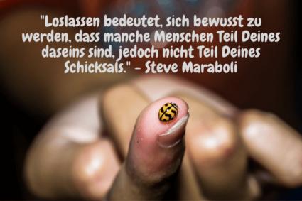 Loslassen bedeutet, sich bewusst zu werden, dass manche Menschen Teil Deines daseins sind, jedoch nicht Teil Deines Schicksals. - Steve Maraboli