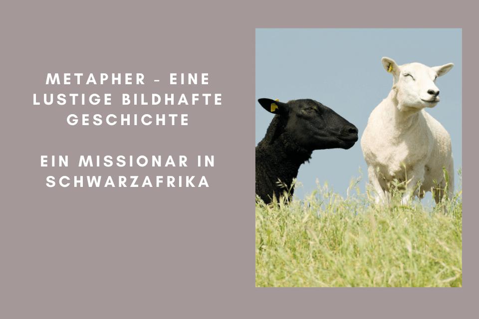 Ein weisses und ein schwarzes Schaf - Ein Missionar in Schwarzafrika befindet sich in einer misslichen Lage