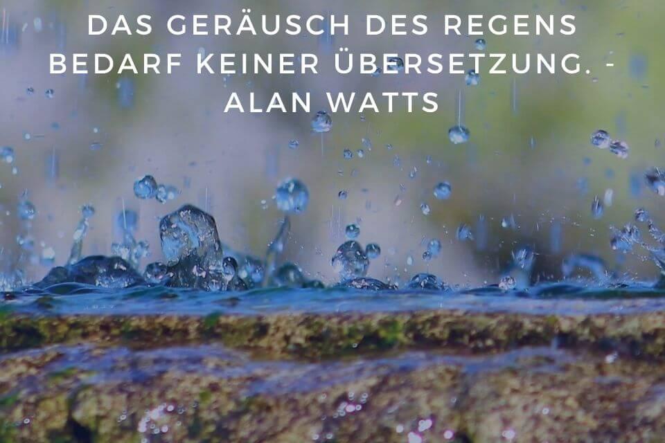 Regentropfen und Regengeräusche zum Einschlafen - Das Geräusch des Regens bedarf keiner Übersetzung. - Alan Watts
