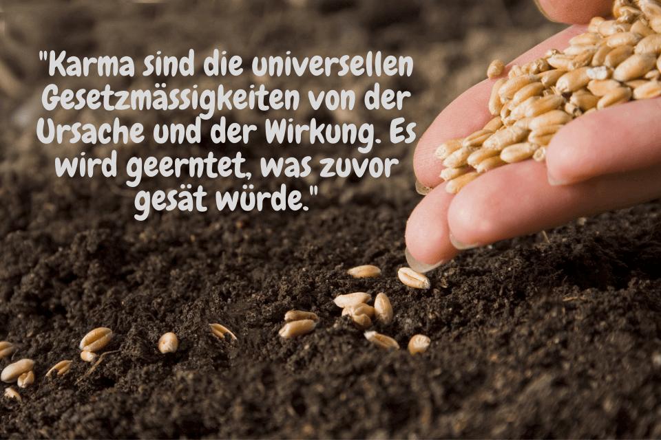 """Samen säen - """"Karma sind die universellen Gesetzmässigkeiten von der Ursache und der Wirkung. Es wird geerntet, was zuvor gesät würde."""""""