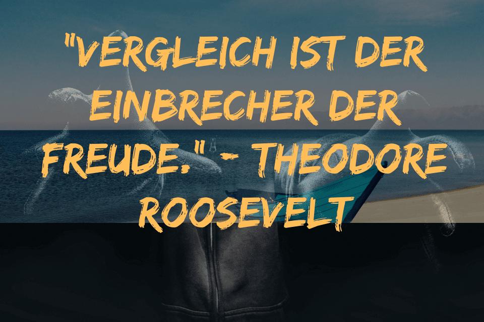 """""""Vergleich ist der Einbrecher der Freude."""" - Theodore Roosevelt"""