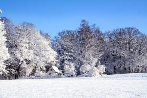 Warum ist Schnee so schön?