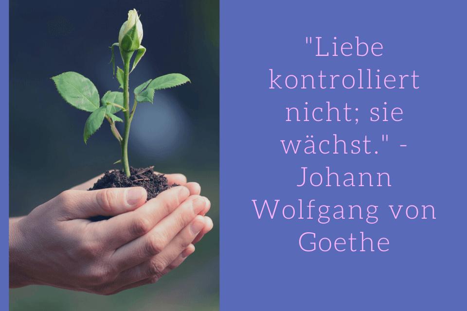 Weisheiten Liebe - Liebe kontrolliert nicht; sie wächst. - Johann Wolfgang von Goethe