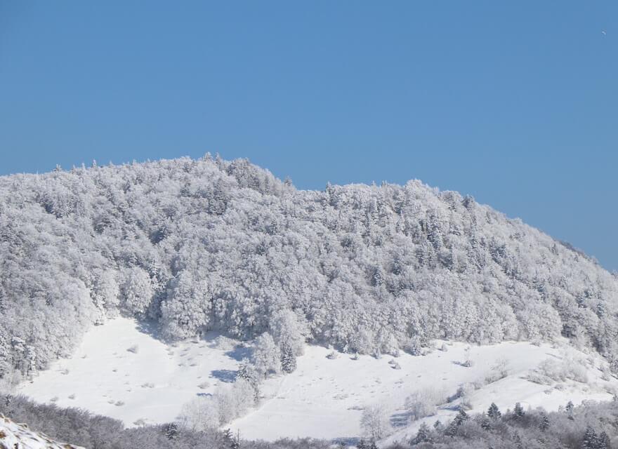 Winterlandschaft - Winter Sprüche - 43 Winter Zitate
