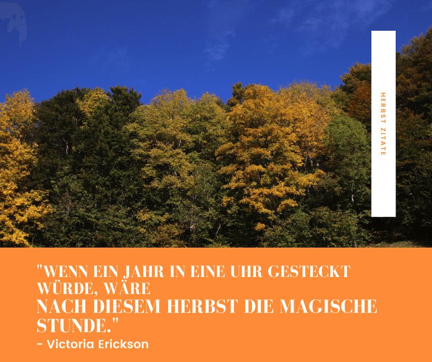 Herbsttag Waldrand mit blauem Himmel