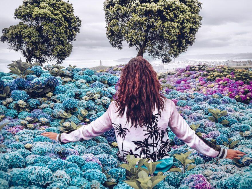 Los-Atmen Atmen Gesundheit Natur Freiheit