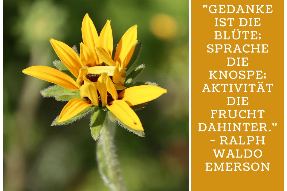"""top Zitate zum Nachdenken - """"Gedanke ist die Blüte; Sprache die Knospe; Aktivität die Frucht dahinter."""" - Ralph Waldo Emerson"""